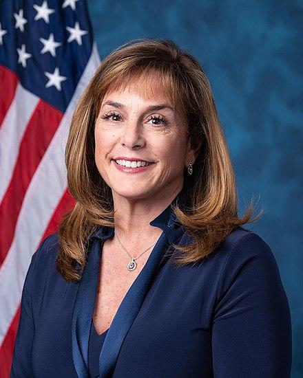Rep Lisa McClain